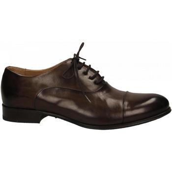 Schuhe Herren Richelieu Brecos MONT. testa-di-moro
