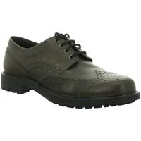 Schuhe Herren Derby-Schuhe & Richelieu Longo Business 3073350-1 1 grau
