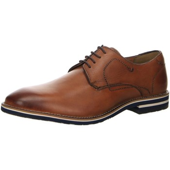 Schuhe Herren Derby-Schuhe & Richelieu Salamander Business 31-57326-07 braun