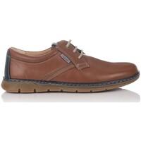 Schuhe Derby-Schuhe & Richelieu Luisetti 23321 Braun