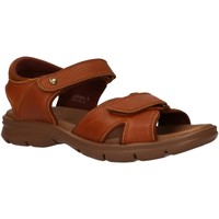 Schuhe Herren Sandalen / Sandaletten Panama Jack SANDERS C10 Beige