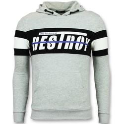 Kleidung Herren Sweatshirts Enos Hoodies Striped Hoodies Grau