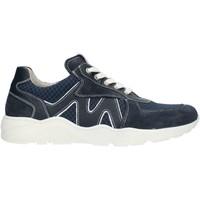 Schuhe Jungen Sneaker Low Nero Giardini P933571M blau