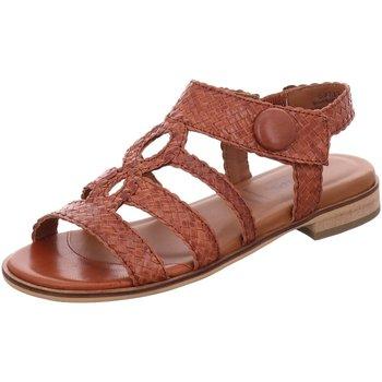 Schuhe Damen Sandalen / Sandaletten Sioux Sandaletten Husniya-703 63713 braun