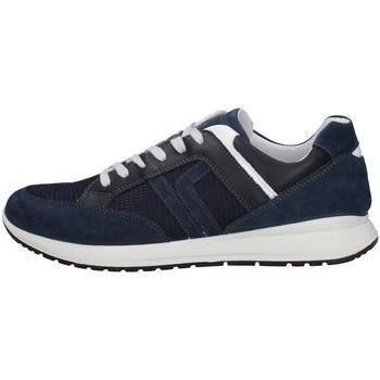 Schuhe Herren Derby-Schuhe IgI&CO 31254/00 BLUE