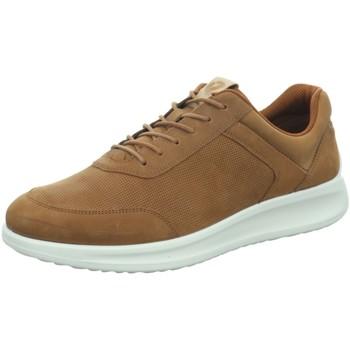 Schuhe Herren Derby-Schuhe & Richelieu Ecco Schnuerschuhe  AQUET 207184/02034 braun
