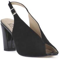 Schuhe Damen Sandalen / Sandaletten Ellen CAMOSCIO NERO Nero