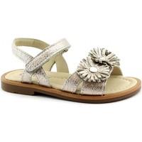 Schuhe Mädchen Sandalen / Sandaletten Balocchi BAL-E19-496490-CO-b Oro