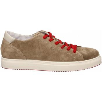 Schuhe Herren Sneaker Low IgI&CO USH 31327 tortora
