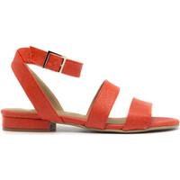 Schuhe Damen Sandalen / Sandaletten Nae Vegan Shoes Gatria Coral Orange