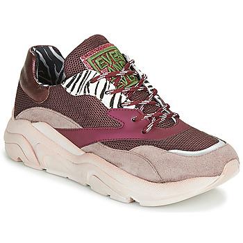 Schuhe Damen Sneaker Low Meline JOLI Rose / Beige