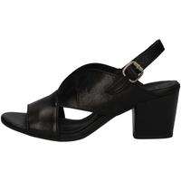 Schuhe Damen Sandalen / Sandaletten Bueno Shoes N2603 BLACK