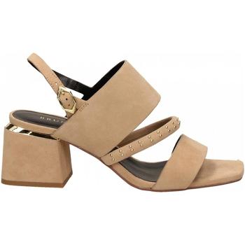 Schuhe Damen Sandalen / Sandaletten Bruno Premi CAMOSCIO misia