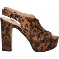 Schuhe Damen Pumps Les Venues LINDY diamant-cognac