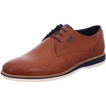 Schuhe Herren Derby-Schuhe & Richelieu Sioux Schnuerschuhe Quintero-701 36510 braun