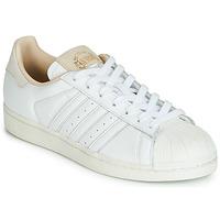 Schuhe Sneaker Low adidas Originals SUPERSTAR Weiss / Beige