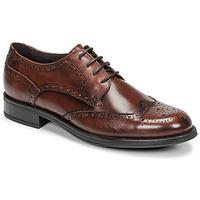 Schuhe Herren Derby-Schuhe Carlington LOUVIAN Braun