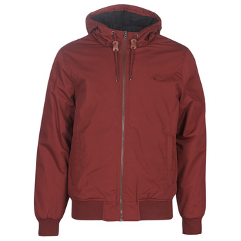 Kleidung Herren Jacken Element DULCEY Bordeaux