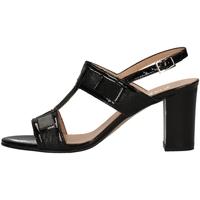 Schuhe Damen Sandalen / Sandaletten Soffice Sogno E9430C BLACK