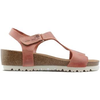 Schuhe Damen Sandalen / Sandaletten Interbios SANDALS W 2019 TEJA