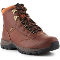 Schuhe Damen Boots Ariat Trekkingschuhe  Berwick lace GTX Insulated 10016298 braun