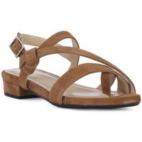Schuhe Damen Sandalen / Sandaletten Frau CAMOSCIO SELLA Marrone