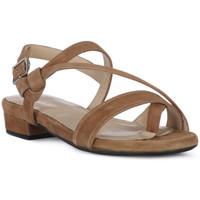 Schuhe Damen Sandalen / Sandaletten Frau CAMOSCIO NERO Nero