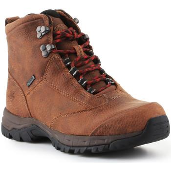 Schuhe Damen Wanderschuhe Ariat Trekkingschuhe  Berwick Lace Gtx Insulated 10016229 braun