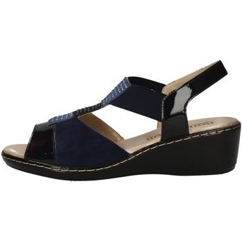 Schuhe Damen Sandalen / Sandaletten Romagnoli B9E7804 BLUE