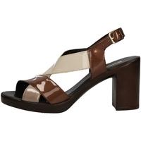 Schuhe Damen Sandalen / Sandaletten Romagnoli B9E7802 BROWN