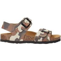 Schuhe Jungen Sandalen / Sandaletten Gold Star - Sandalo tortora 1805ST MARRONE