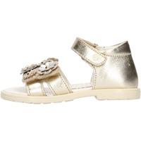Schuhe Mädchen Sandalen / Sandaletten Falcotto Puppy sandalo in pelle da bambina PLATINO