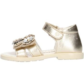 Schuhe Mädchen Sandalen / Sandaletten Falcotto - Sandalo platino PUPPY PLATINO