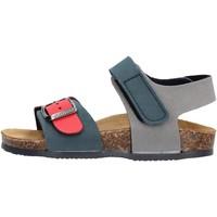 Schuhe Jungen Sandalen / Sandaletten Gold Star Goldstar 8804 sandali blu in micropelle da bambino BLU