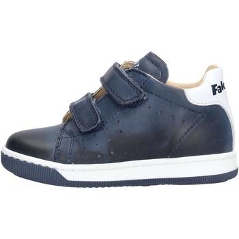 Schuhe Jungen Sneaker Low Falcotto - Polacchino da Bambino Blu in  ADAM VL