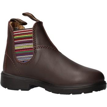 Schuhe Jungen Boots Blundstone - Beatles basso marrone 1413 MARRONE