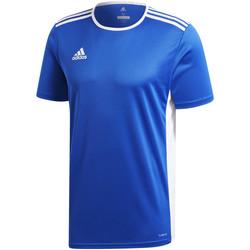Kleidung Jungen T-Shirts adidas Originals - T-shirt azzurro CF1037 AZZURRO
