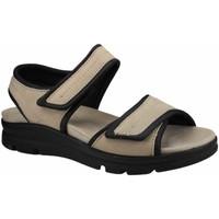 Schuhe Damen Sandalen / Sandaletten Aco Sandaletten -schwarz 0736/7611/00/10 Pam 11 beige