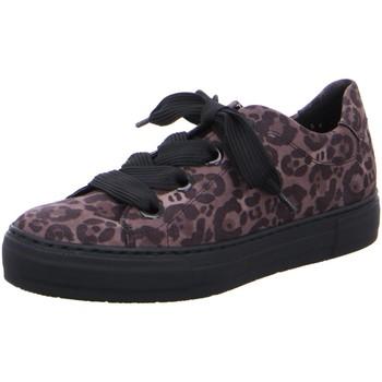 Schuhe Damen Sneaker Low Ara Schnuerschuhe COURTYARD 12-37486-70 grau