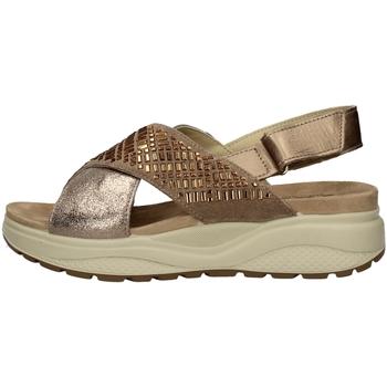 Schuhe Damen Sandalen / Sandaletten Imac 309730 TAUPE
