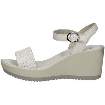 Schuhe Damen Sandalen / Sandaletten Imac 307450 WEISS