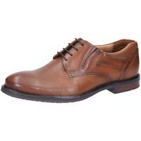 Schuhe Herren Derby-Schuhe & Richelieu Lloyd Schnuerschuhe KARAKUL 1935013 3 braun