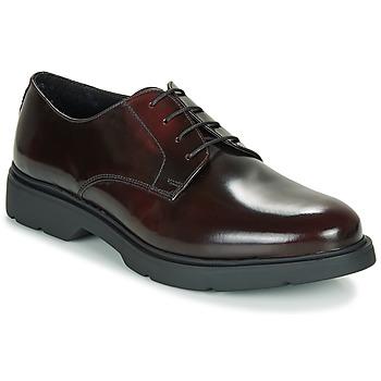 Schuhe Herren Derby-Schuhe André CHAD Bordeaux