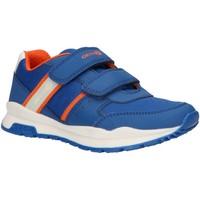 Schuhe Jungen Multisportschuhe Geox J925DA 054FU J CORIDAN Azul