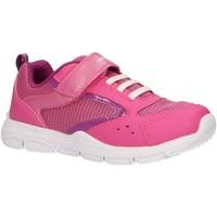 Schuhe Mädchen Multisportschuhe Geox J928HA 054GN J NEW TORQUE Rosa