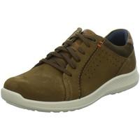 Schuhe Herren Derby-Schuhe & Richelieu Jomos Schnuerschuhe 1 322316-141-3081 braun