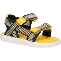 Schuhe Kinder Sandalen / Sandaletten Timberland A1Y9X PERKINS Azul