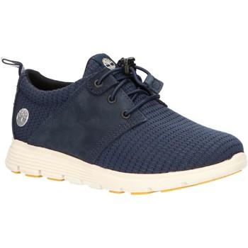 Schuhe Kinder Multisportschuhe Timberland A217A KILLINGTON Azul