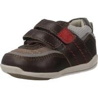 Schuhe Jungen Sneaker Low Chicco G12.0 Brown