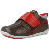 Schuhe Jungen Sneaker Low Chicco G1 Brown